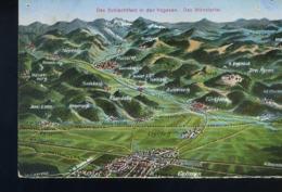 Schlachtfeld Munstertal Walbach Vers 1915 - Munster