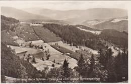AK Spitzberg Maria Schnee - Panorama Vom Glatzer Schneegebirge - 1929 (44157) - Schlesien