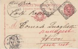 405 - STORIA POSTALE - REGNO - CARTOLINA POSTALE ITALIANA DA VENTIMIGLIA  A VIENNA 5-8-1902 - 1900-44 Vittorio Emanuele III