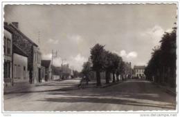 Carte Postale 51.  Vertus  Avenue De La Gare Trés  Beau Plan - Vertus
