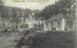 Hollogne Sur Geer Les Ruines Du Vieux Chateau N° 1 Laflotte 1911 - Geer