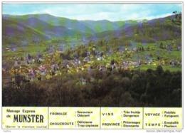 Carte Postale 68.  Munster  Trés Beau Plan - Munster