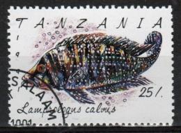 Tanzania 1992 Single 25s Stamp From The Definitive Set On Marine Life. - Tanzania (1964-...)