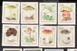 633  Mushrooms - Champignons - DDR Yv 1613-20 - Slightly Toned Gum - Free Shipping - 1,75 (7) - Mushrooms