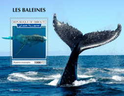 Djibouti 2019 Fauna Whales S201909 - Djibouti (1977-...)