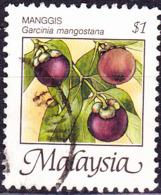 Malaysia - Mangostane (Garcinia Mangostana) (MiNr: 334) 1986/94 - Gest Used Obl - Malaysia (1964-...)