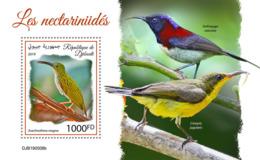 Djibouti 2019 Fauna Sunbirds S201909 - Djibouti (1977-...)