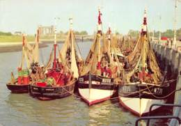 Nieuport - Barques De Pêche - Nieuwpoort