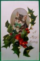 Cpa Gaufrée ,  PETIT CHAT, NOEUD Bleu Et HOUX , NOEL 1908  , Embossed Cute CAT Kitten HOLLY CHRISTMAS  KATZE Old Pc - Katzen