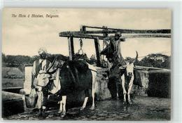 53043548 - Belgaum - India
