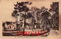 CPA - Les Villas Dans Les Pins - SAINT JEAN DE MONTS 85 Vendée - N° 24 - Edit. Fourage-Andrillon, Bazar - Saint Jean De Monts