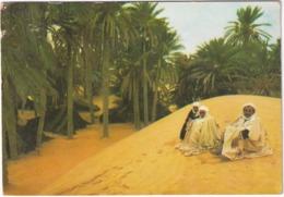 Douz - Une Oasis Du Désert - (Tunesie) - Tunesië