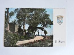 SAINT-NAZAIRE - Le Jardin Des Plantes  Ref 2264 - Saint Nazaire