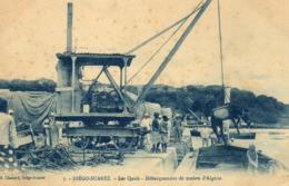 MADAGASCAR DIEGO SUAREZ Les Quais Débarquement De Mulets D'Algerie - Madagascar