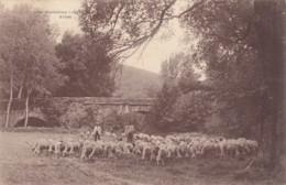 CPA - Pierrefeu - - Autres Communes