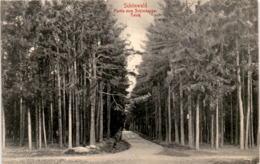 Schönwald - Partie Zum Schimberger Teich * 28. 7. 1918 - Czech Republic