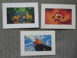 3 Cartes Postales Disney' Roi Lion - Altri