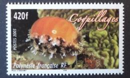 Polynésie Française: Coquillage (2003), Yvert N° 695, Neuf ** - Polynésie Française
