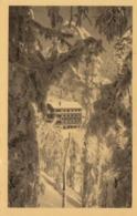 Cp , 68 , MUNSTER , Environs , Hôtel Des Roches à La Schlucht, 1159 M. D'alt., Ouvert Toute L'année - Munster