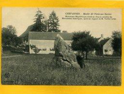 4509 - CHEVANNES - Menhir Dit Pierre Aux Sorciers - Other Municipalities