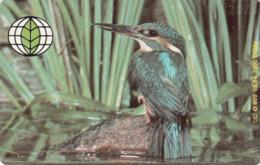 GERMANY - Deutsche Umwelthilfe:Kingfisher Eisvogel Puzzle 1/2 (Bird), O 0902-05/94 , Tirage 7.300 ,mint - Duitsland