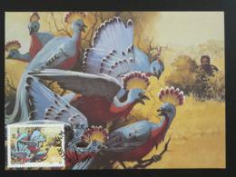 Carte Maximum Card Paon Peacock (ref 86160) - Pavoni