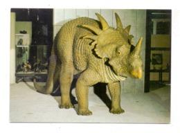 PRÄHISTORISCHE TIERE - STYRACOSAURIER, Naturkundemuseum Dortmund - Animaux & Faune
