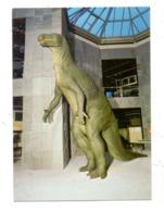 PRÄHISTORISCHE TIERE - IGUANODON-SAURIER, Naturkundemuseum Dortmund - Animaux & Faune