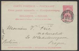 """EP Au Type 10ctm Rouge Fine Barbe Obl Simple Cercle """"Maredret (Sosoye)"""" Vers Prague (Bohême) - Postales [1871-09]"""