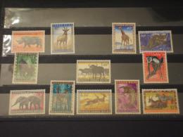 CONGO - 1959 FAUNA 12 VALORI - NUOVI(++) - Congo Belga