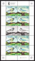 Bosnia Croatia 2019 Europa CEPT National Birds Fauna Parus Major, Parus Caeruleus, Mini Sheet MNH - 2019