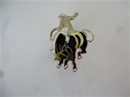 PINS RODEO  COWBOY  CHEVAL TAUREAU /  Qualité Démons Et Merveilles / 33NAT - Badges
