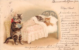 CHAT HUMANISE    CARTE PIONNIERE 1900 - Chats