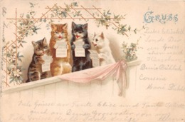 CHAT HUMANISE    CARTE PIONNIERE 1898 - Chats