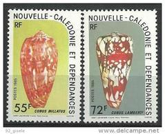 """Nle-Caledonie YT 498 & 499 """" Coquillages """" 1985 Neuf** - Ungebraucht"""