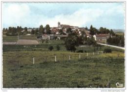 Carte Postale 63.  Fournols-d'Auvergne  Trés Beau Plan - France