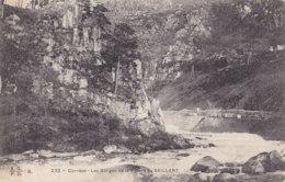Saillant (19) - Les Gorges De La Vézère - France