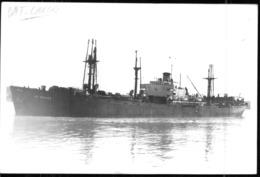 """Photo Récente Bateau """" La Pallice """" Delmas Liberty Ship - Reproducciones"""