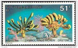 """Nle-Caledonie YT 557 """" Faune Marine """" 1988 Neuf** - New Caledonia"""