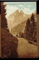CPA SUISSE COL DE TANNAY (alt 1420m) COLORISEE N°423 SEAL EDIT ART R.E. CHAPALLAZ FILS LAUSANNE - VS Valais