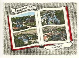 52 - SOUVENIR De SAVIGNY / MULTIVUES - France