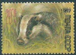 B1966 Russia USSR Fauna Wild Animal European Badger ERROR - Nager