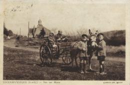 Attelage Ane à Lucenay L' Eveque . Vue Sur Morez . Enfants  . Type Mercure 70 Cts - Donkeys