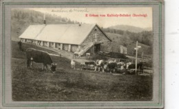 CPA - Environs De MOOSCH (68) - Aspect De La Ferme-Auberge-Métairie Knibiely-Bellaker-Rossberg En 1909 - France