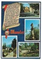 68 Munster - Multi-vues (L'Hôtel De Ville, Vieille Fontaine, Le Parc, Un Coin Pittoresque) - Munster