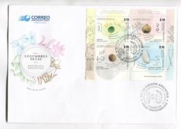 LEGUMBRES SECAS DE LA REPUBLICA ARGENTINA - ARGENTINA 2016 FDC SOBRE DIA DE EMISION CON BLOQUE BLOC -LILHU - Vegetables