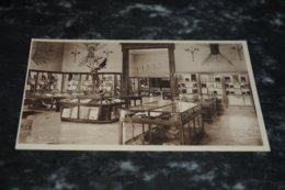 7502-    TERVUEREN, MUSEE DU CONGO BELGE, SALLE DES BOIS - Tervuren