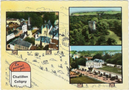 45 Chatillon Coligny Vues Multiples - Chatillon Coligny