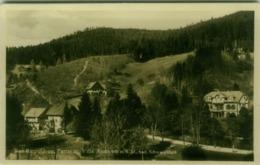 AK GERMANY - BAD RIPPOLDSAU - VILLA ANNA - 1940s (BG4635) - Bad Rippoldsau - Schapbach