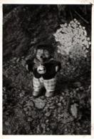 Photo Originale Portrait De Mecki,  Mascotte DumagazineHörzu Se Promenant Au Jardin Vers 1960 - Automobiles